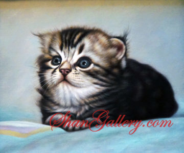 A Cat, ShanGallery.com