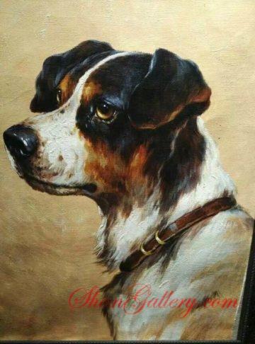 Dog, Shangallery.com